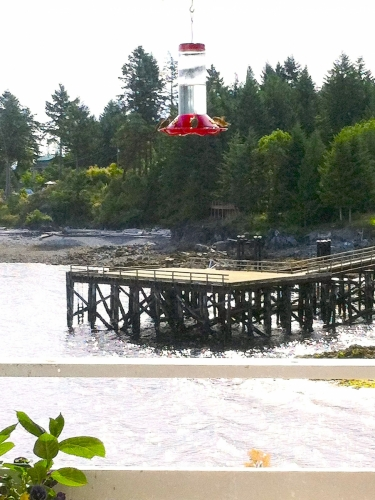 view-dock-feeder
